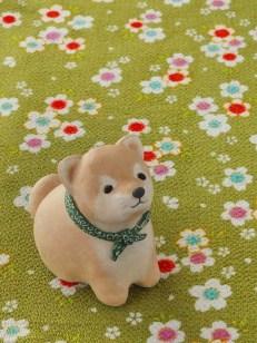 豆助風柴犬