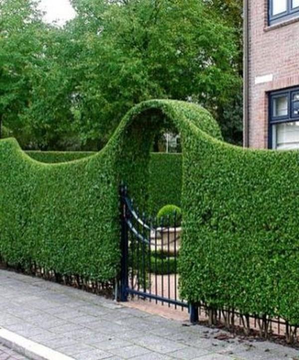 wonderful ideas make fence