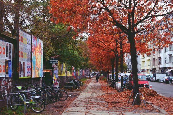 transboulognexpress automne decouvrir berlin