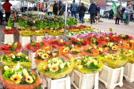 Bloemenjaarmarkt49