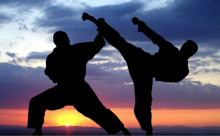 cursos gratis de Karate