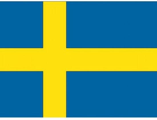 Cursos de sueco gratis
