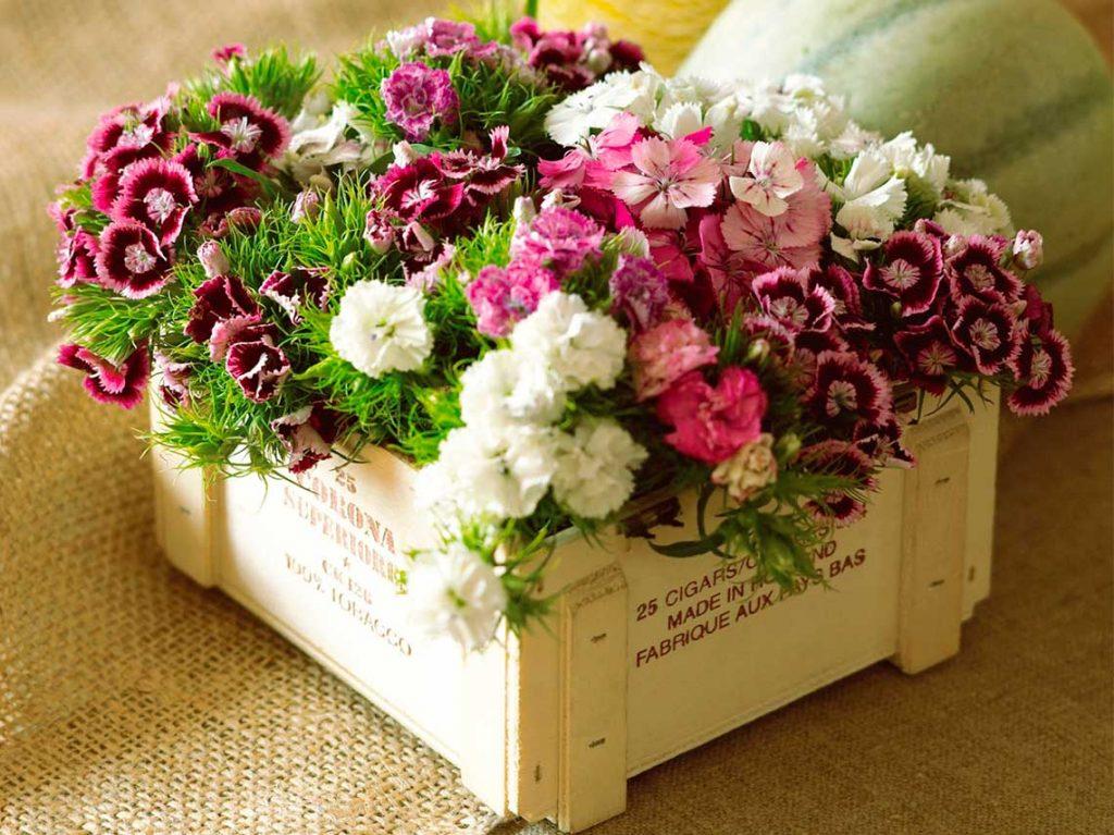 Top Cursos De Arreglos Florales Naturales Gratis No Te Los