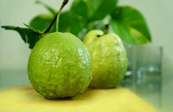 gambar buah jambu