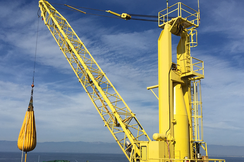 Image result for crane inspection services