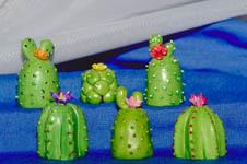 coleccion_cactus
