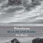 Waveforms: essay and sample haiku by Pat Boran
