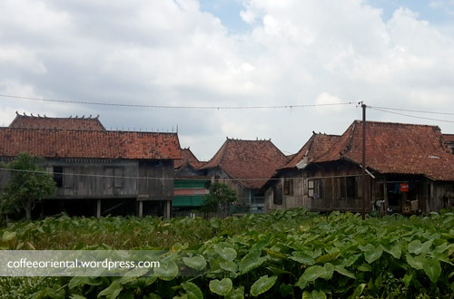 firma18 - Telisik Kampung Firma, Perkampungan Rumah Tradisional 4 Ulu Palembang
