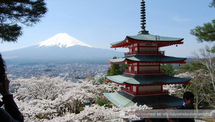 chureito pagoda - Menikmati Sakura Jepang Enaknya Kemana? Yamanashi!