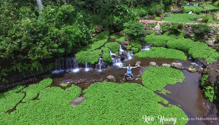 foto drone green paradise