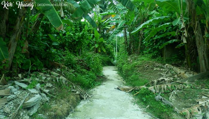 jalan setapak di pulau pisang