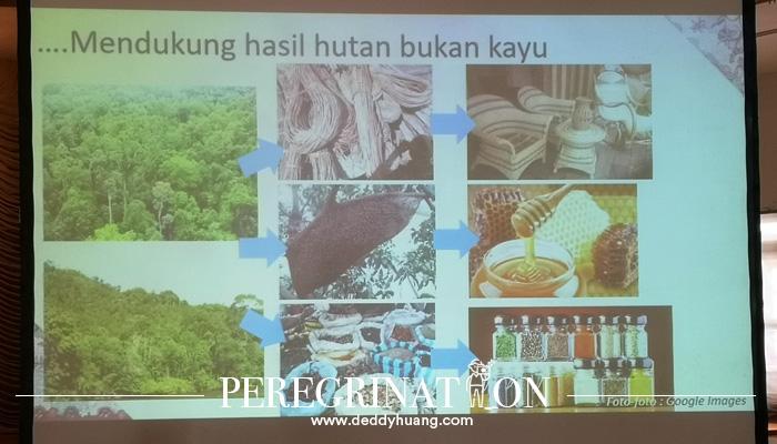 produk hutan non kayu