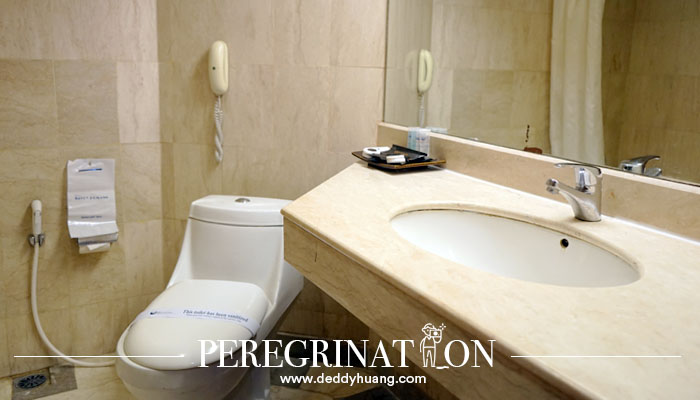 toilet duduk hotel savoy homann