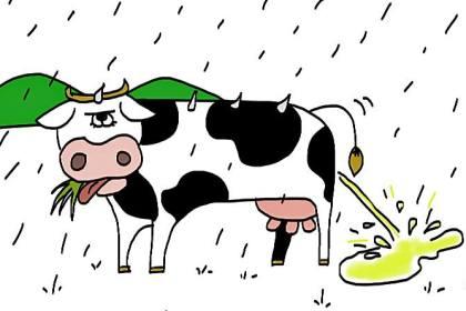 pleuvoir comme vache qui pisse Les Dédexpressions