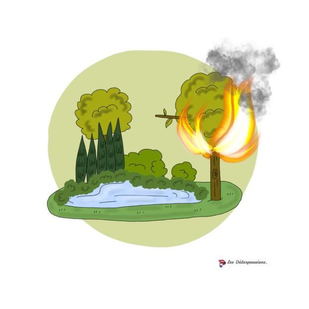 Il n'y a pas le feu au lac Les Dédexpressions