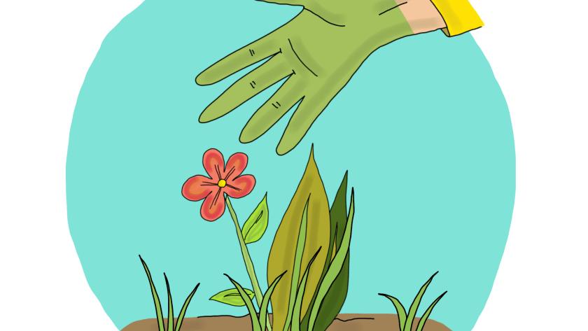 expression avoir la main verte les dedexpressions
