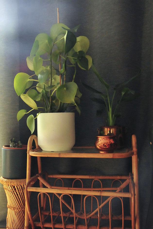 rotan plantenkruk tijdschriftenbak