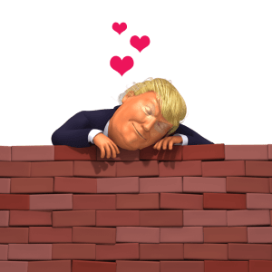 trump loves the wall