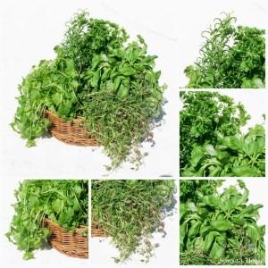 Indoor Herb Garden tutorial