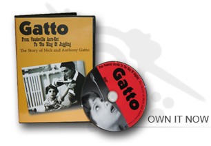 Gatto Documentary