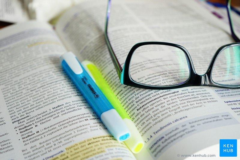 Membaca Sebagai Bahan Bakar Gagasan