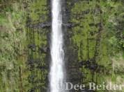 Akaka Falls close-up