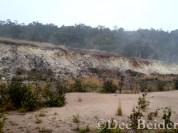 Sulphur Banks Trail