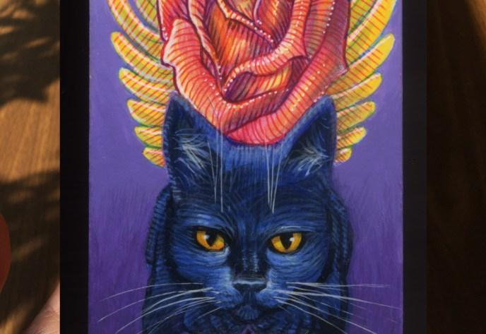 ROSE WINGED CAT ZOOM
