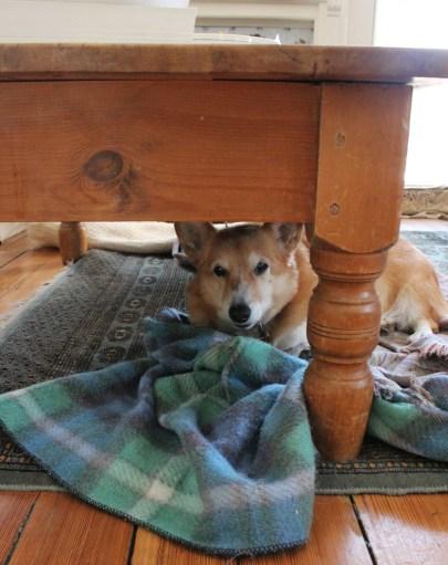 Jack-and-blanket