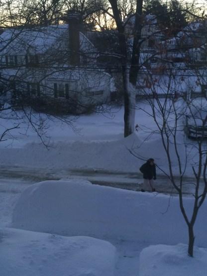 snow-morning-deemallon