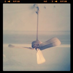An Old-Fashioned Fan (with filter)