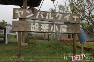 沖縄県 国頭村