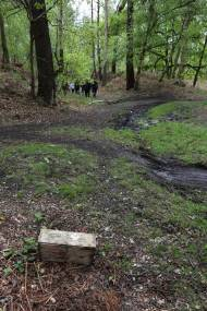 1 Trenches Walk Deepcut - Alan Meeks (15)
