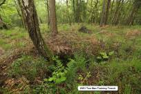 1 Trenches Walk Deepcut - Alan Meeks (17)