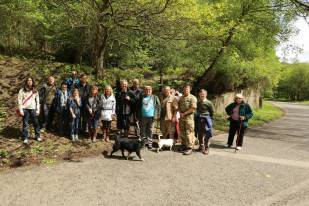 1 Trenches Walk Deepcut - Alan Meeks (24)
