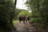 1 Trenches Walk Deepcut - Alan Meeks (9)
