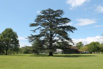 Loseley Park - Claire Funnell (28)