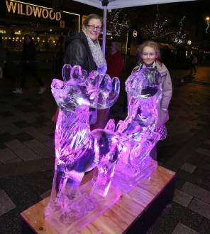 Ice sculptures - Alan Meeks 35