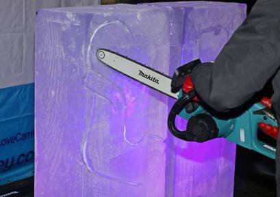 Ice sculptures - Alan Meeks 6