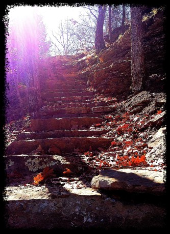 Afternoon hike on the Yellow Rock Trail at Devil's Den State Park