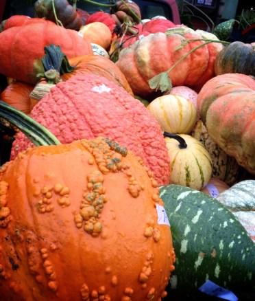 Truckbed Full O'Pumpkins
