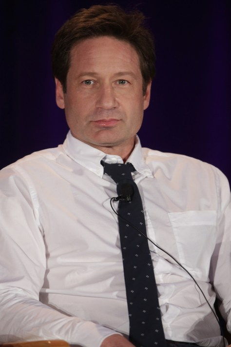 """NBCUNIVERSAL EVENTS -- NBCUniversal Summer Press Day, April 2015 -- """"Aquarius"""" Panel -- Pictured: David Duchony -- (Photo by: Chris Haston/NBC)"""
