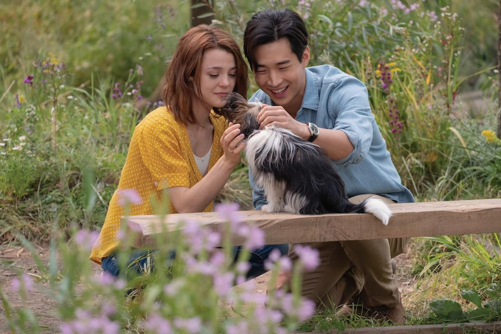 "Henry Lau Was Attracted To The ""Powerful Themes"" Behind 'A Dog's Journey'"
