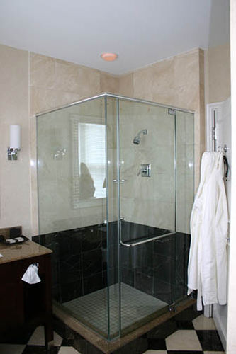 Alluvian Hotel Shower, Greenwood, Mississippi