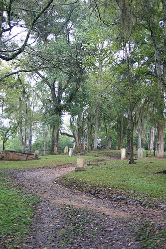 Grand Gulf Cemetery - Grand Gulf, Mississippi