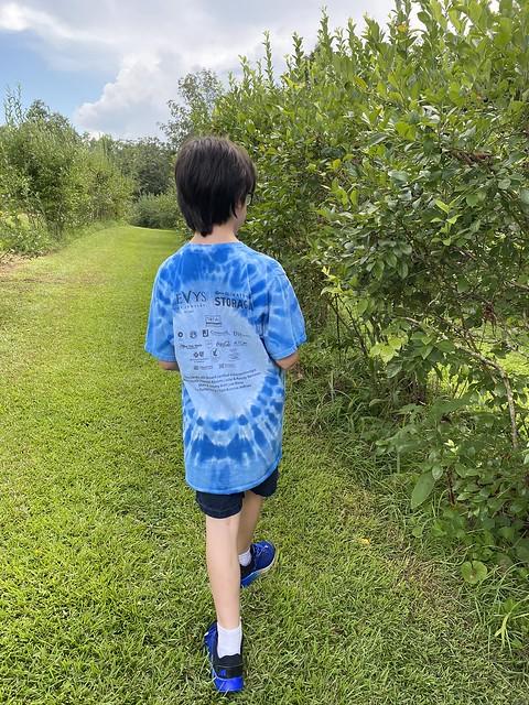 Bragwell Blueberry Farm, Cullman AL