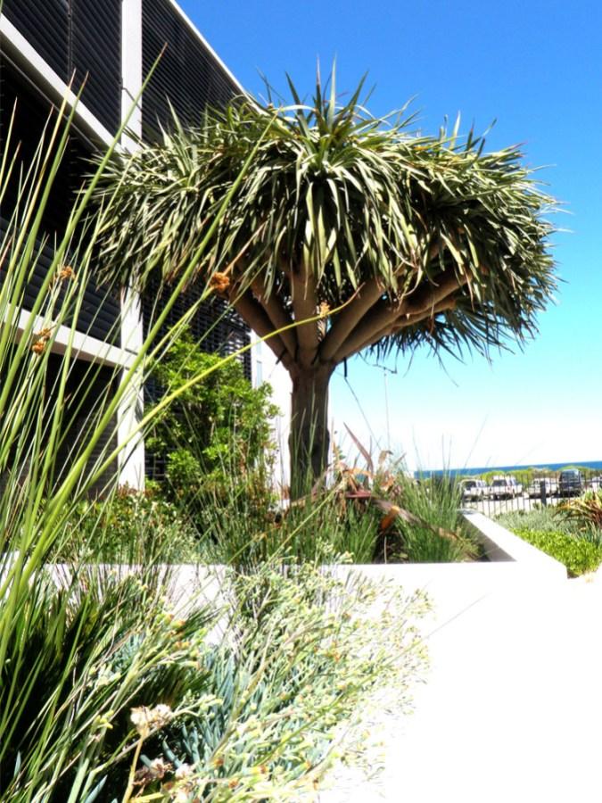 Leighton Beach Garden