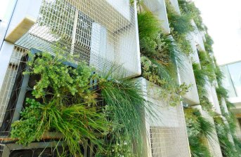 Northbridge Piazza vertical garden