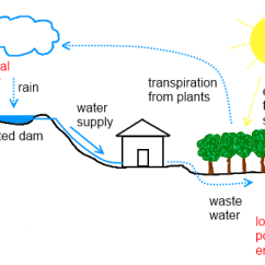 Water Ecosystem Diagram Nuheat Neostat Wiring 6. Energy Cycling | Deep Green Permaculture
