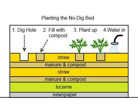 Diy Instructions No Dig Gardening